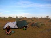 Peace in the desert