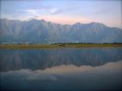 141 'Dal Lake' - Kashmir