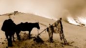 132 'Ponys At 5400m' - Nepal