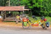 WP Thailand 30
