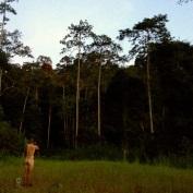 Jungle bathing...