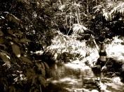 116 'Jungle Yoga' - Malaysia